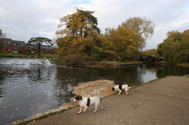 Exploring the banks of Avon by Lucy's Mill