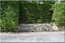 TQ5243 : Bench in the hedge by N Chadwick