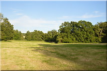 TQ3328 : Sussex Ouse Valley Way by N Chadwick