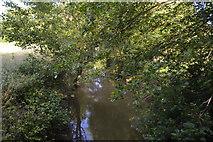 TQ3328 : River Ouse by N Chadwick