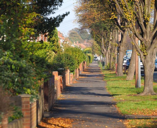 Gillshill Road's Western Path