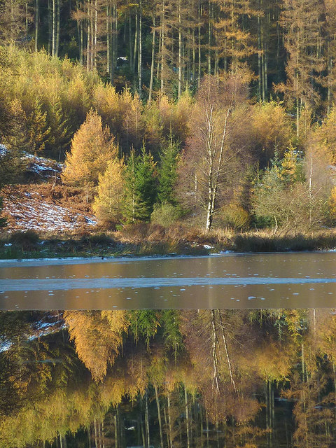 Reflection, Hob Gill Tarn