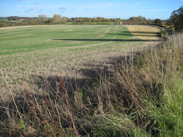 Farmland near Borough Farm