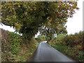 SJ5153 : Bickerton Road by JThomas