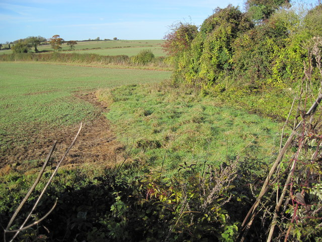 Farmland on Itchen Down