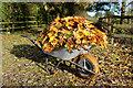 SE4757 : Wheelbarrow outside Pool Spring Farm : Week 46