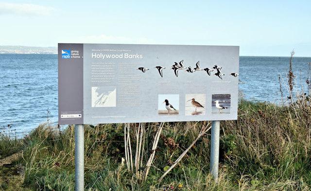 Holywood Banks sign, Belfast harbour (November 2016)