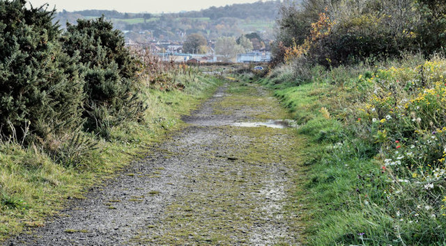 Coastal path, Belfast harbour (November 2016)