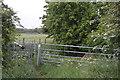 TL4765 : Gate off Cockfen Lane by N Chadwick