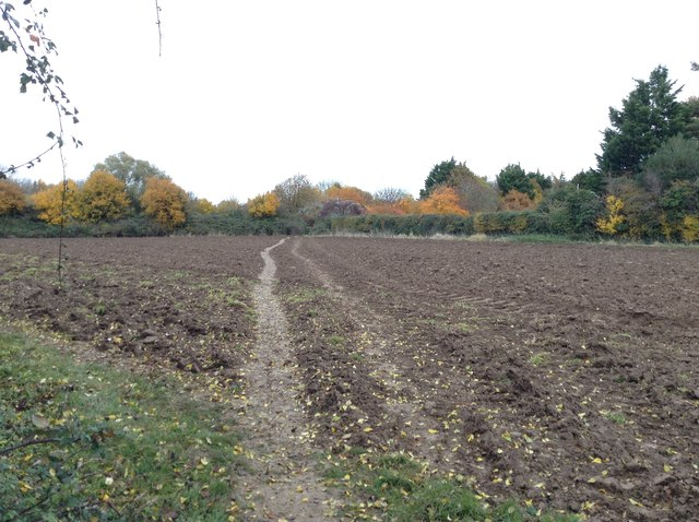 Cross-field path to Fishbourne church