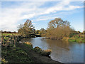 TL3169 : On the Great Ouse riverside path in November by John Sutton