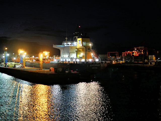 Port of Dublin at Night