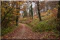 SX0871 : Camel Trail by Guy Wareham