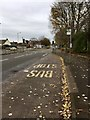 SJ8446 : Newcastle-under-Lyme: bus stop and lay-by on Liverpool Road by Jonathan Hutchins