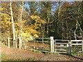 SU8086 : Geoff and Mildred's Gate by Des Blenkinsopp