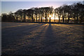 SE2742 : Sunrise through the Trees near Blackhill Farm : Week 48