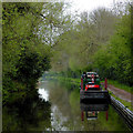 SO8898 : Staffordshire and Worcestershire Canal near Compton, Wolverhampton by Roger  Kidd