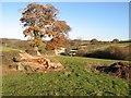 SH9273 : Aber-ymryson field by Jonathan Wilkins