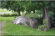 TQ5045 : Not the Chiding Stone by N Chadwick