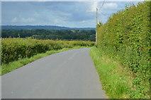 TQ5045 : Lane to Vexour Bridge by N Chadwick