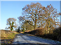 SP6329 : Lane towards Tingewick by Robin Webster