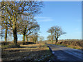 SP6338 : Road with broad verge by Robin Webster