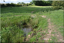 TQ5145 : Tributary stream of the River Eden by N Chadwick