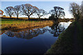 SD4850 : Lancaster Canal, Forton : Week 49