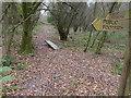 TQ2026 : Footpath with plank bridge in Spring Wood by Shazz