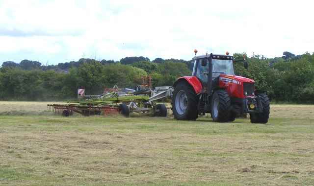 Cutting the hay at Bear Mead nature reserve, near Cowgrove