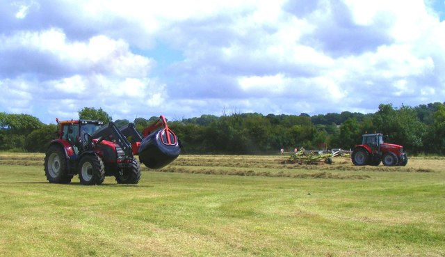 Hay cutting at Bear Mead nature reserve
