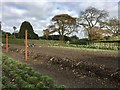 SW9946 : Lost Gardens of Heligan: kitchen garden by Jonathan Hutchins