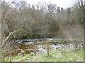 NS5825 : River Ayr by Richard Webb