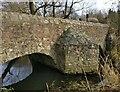 SK5600 : The medieval Packhorse Bridge in Aylestone by Mat Fascione