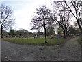 SJ8850 : Burslem Cemetery by Jonathan Hutchins