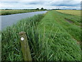 TL4699 : Hereward Way marker along the old course of the River Nene by Mat Fascione