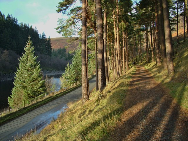 Elan Valley trail beside the Garreg-ddu reservoir