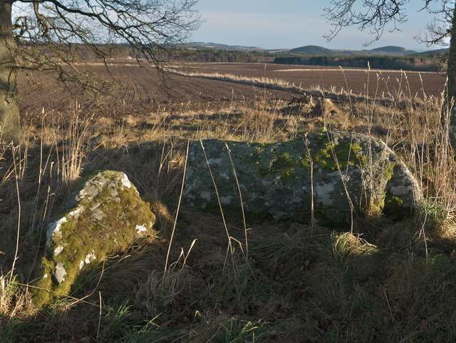 Stones of The Temple Chambered Cairn (remains of)