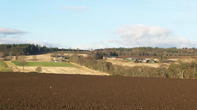 Black Isle December farming landscape