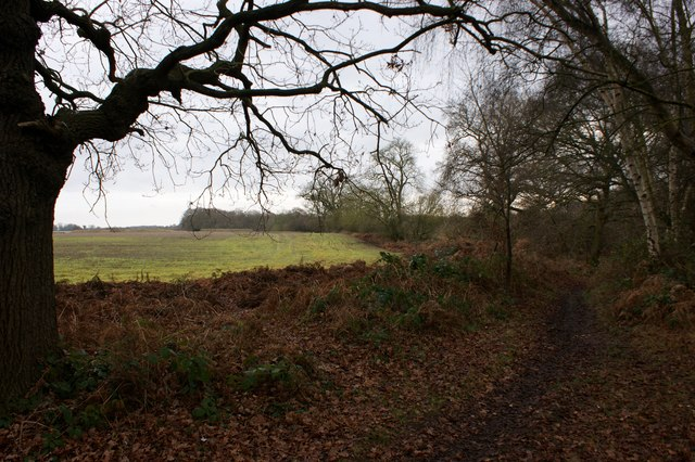 Bridlepath towards Bentley Manor