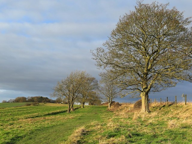 Hadrian's Wall Trail near Rudchester
