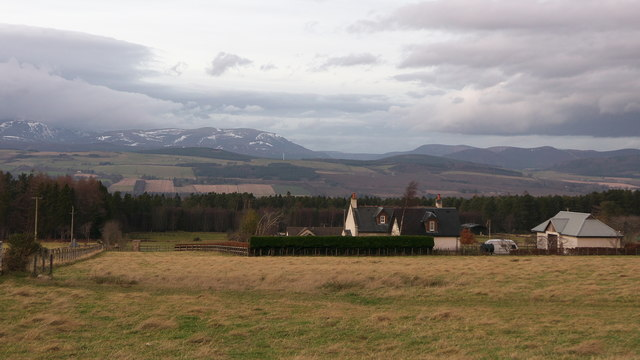 The Paddocks, Greenleonachs