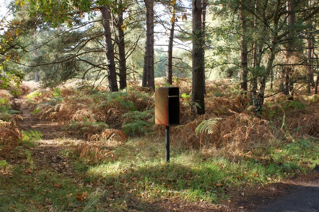 Redundant postbox, Lower Hollesley Common