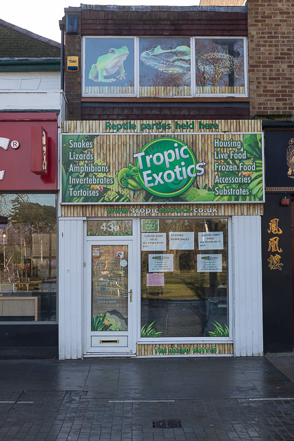 Tropical Exotics, Leigh Road