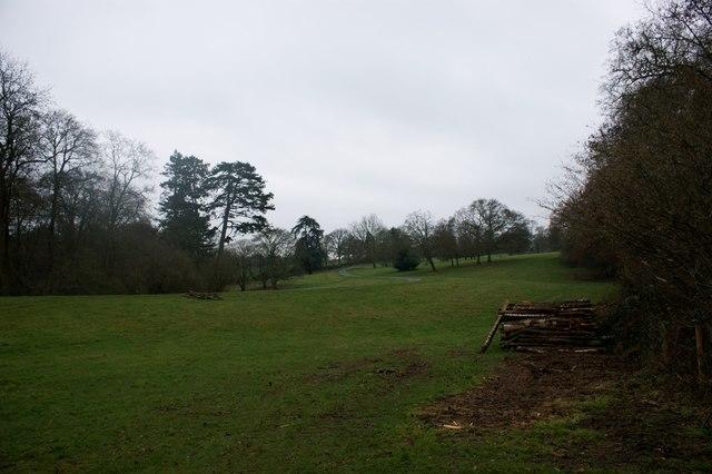 Parkland on the Nettlebed Estate