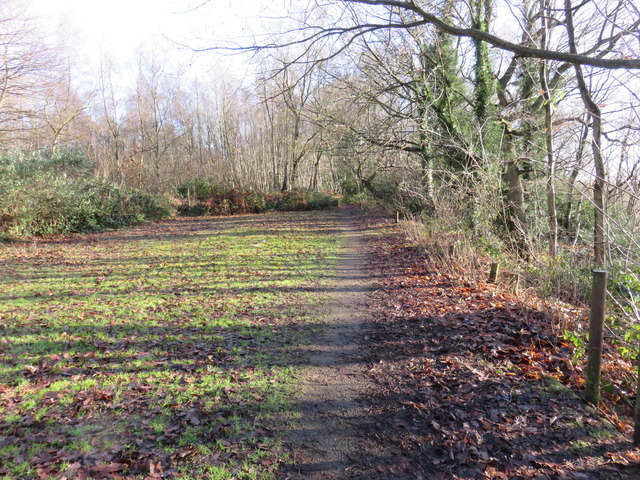 Path on Tilburstow Hill