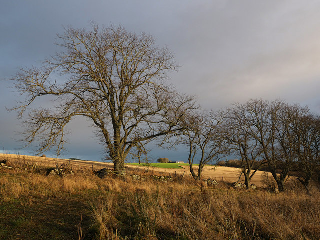 The edge of the Rosehaugh Estate