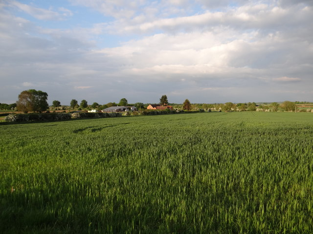 Fields near Alveston Farm