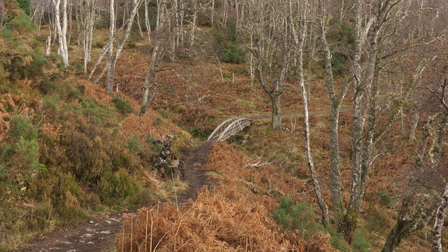 Cycle bridge on the Strathpuffer circuit