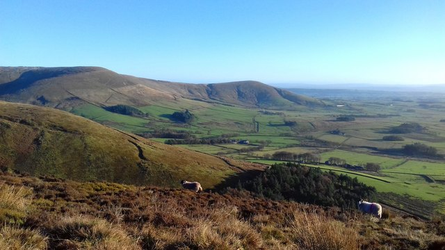 Over Coolam Wood towards Fairsnape Fell and Parlick